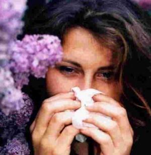 Las dichosas alergias 3