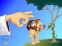 Una manzana al día te alarga la vida 2