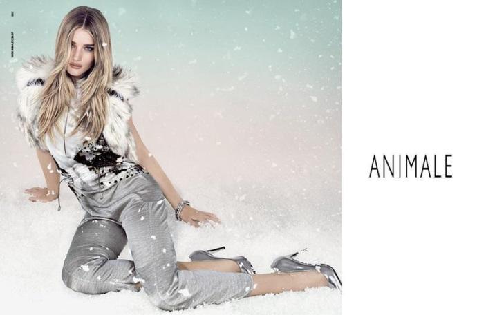 moda 2013 animale