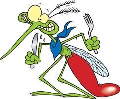 ¿Cómo evitar que nos piquen los mosquitos? 2