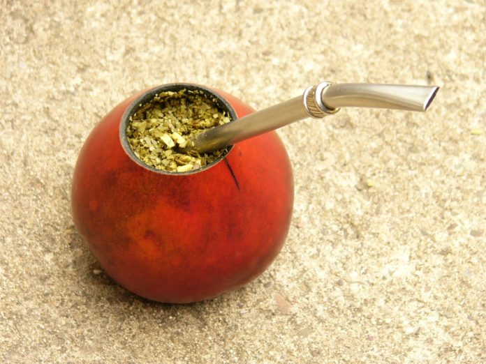 Yerba mate, un producto natural con importantes propiedades medicinales 4