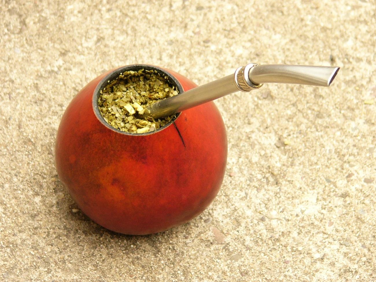 Yerba mate, un producto natural con importantes propiedades medicinales 2