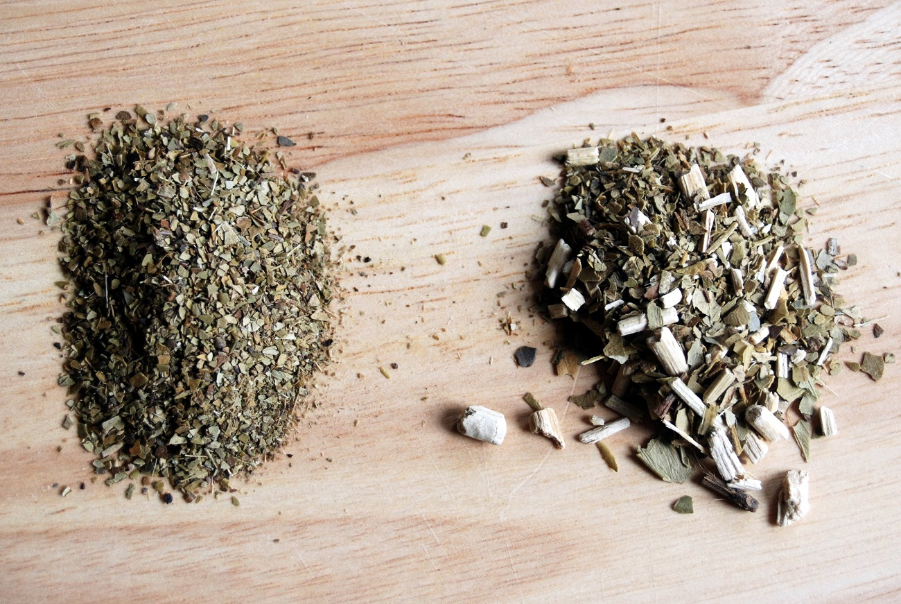 Yerba mate, un producto natural con importantes propiedades medicinales 1