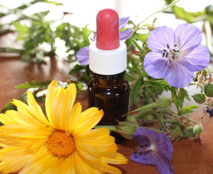 ¿Cómo puede ayudar la homeopatía a tu salud? 2